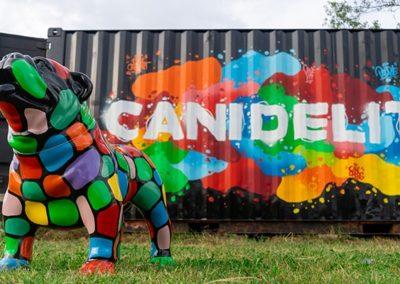 Graffiti live Canidélite