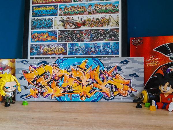 toile-graffiti-toulouse