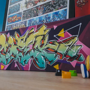 toile-pozek-graffiti-toulouse